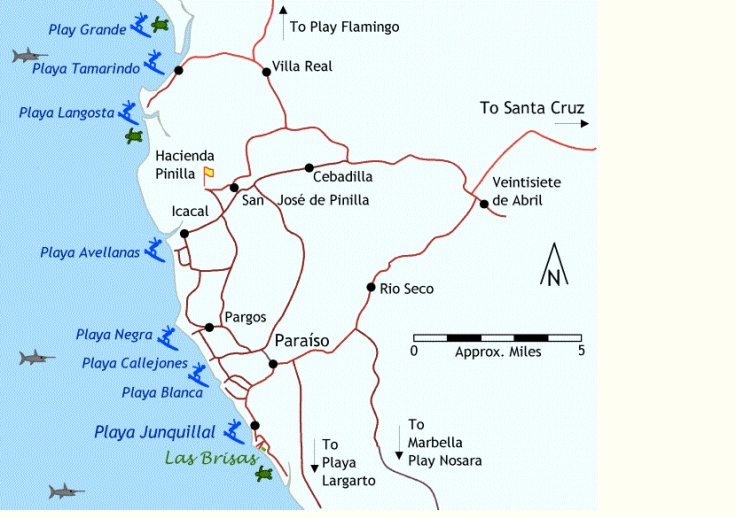 Map of Beaches near Santa Cruz